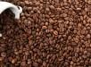 caffe_venezia