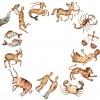 12-segni-zodiacali