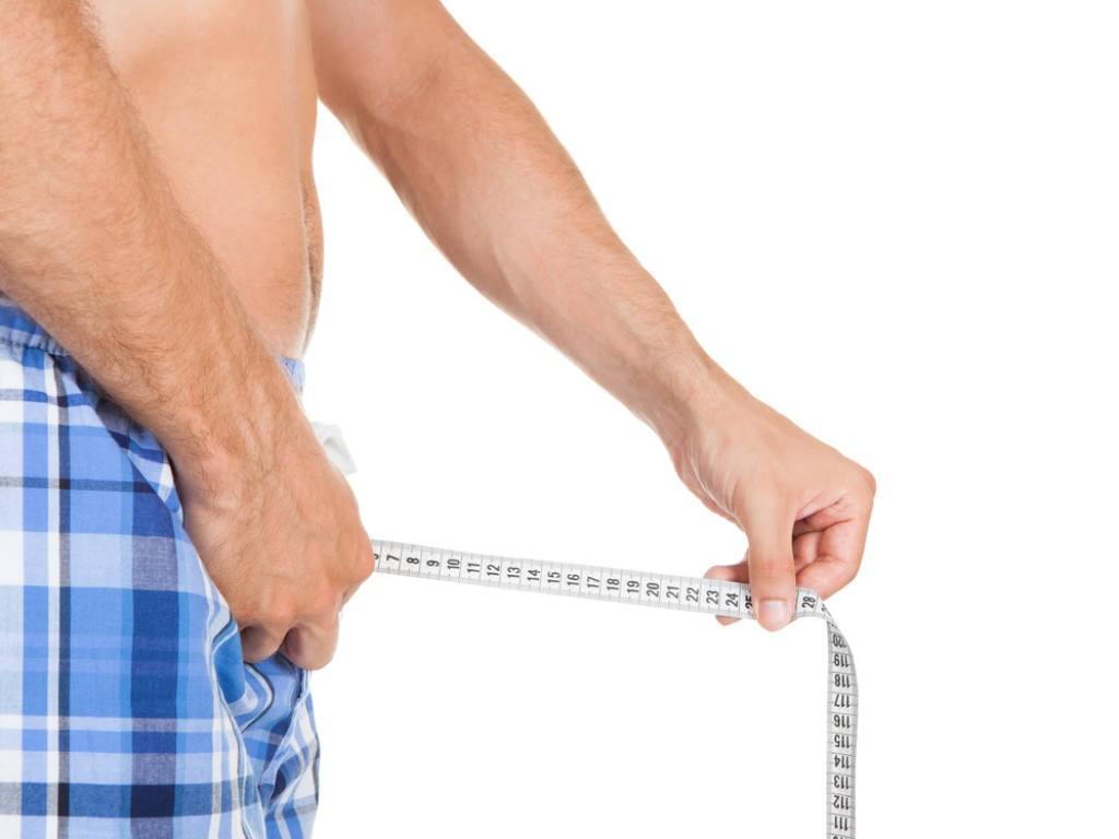 La lunghezza media del pene, secondo la scienza - ambersun.lt